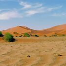 desert bushes by mamba