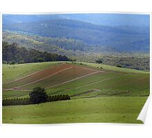 Crops growing on the hills, Gembrook, Dandenong Ranges Poster