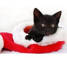black kitten in a santa hat Photographic Print