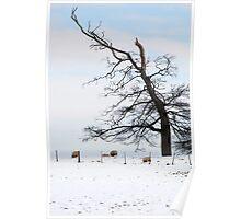 Winter Flock Poster