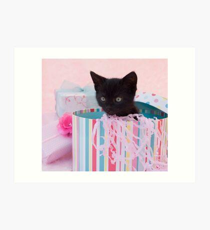 Birthday kitten Art Print