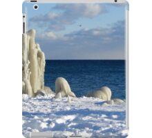 an awe-inspiring Canada landscape iPad Case/Skin