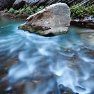 Rock and Water Designs, Zion National Park, Utah by Alan C Williams