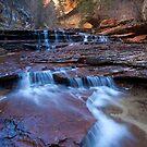 Stone Cascades, Left Fork Creek, Zion National Park, Utah by Alan C Williams