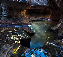 Colors of Zion, The Subway, Utah by Alan C Williams