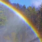 Rainbow In The Mist by Deborah  Benoit