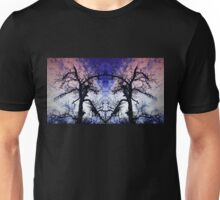 Dance Of The Dragons Unisex T-Shirt