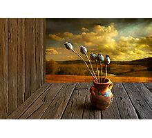Beautiful September day Photographic Print