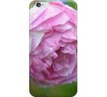 Droplet Rose iPhone Case/Skin