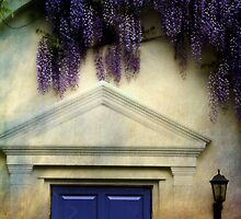 Wisteria door by Sonia de Macedo-Stewart