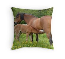 foal and mother Throw Pillow