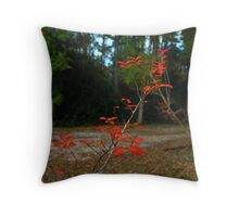 The Beauty Of A Simple Little Tree Limb  Throw Pillow