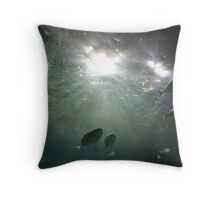 Fishy-ness - Melbourne Aquarium - VIC Throw Pillow