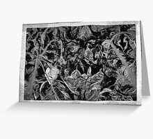 MYSTERY OF FALL IN BLACK AND WHITE Greeting Card