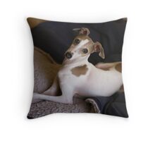 Am I not the prettiest girl you've ever seen? Throw Pillow