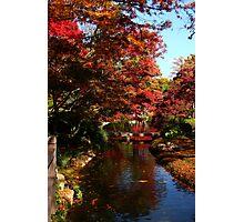 Japanese Botanic Garden-Fort Worth Photographic Print