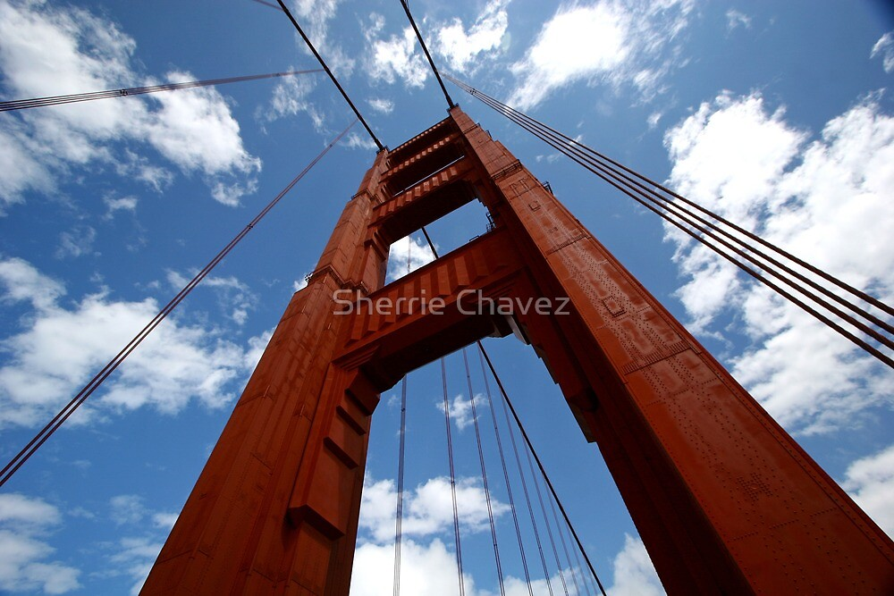 Looking Up by Sherrie Chavez