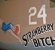 Strawberry Bitch by Karl R. Martin