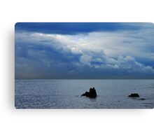two beings.... Canvas Print