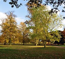 Hyde Park, London by Pat Herlihy