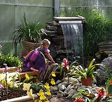 The Orchid Garden by Dawn Palmerley