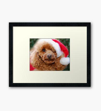 Santa Toffee Framed Print
