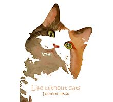 Life Without Cats Vector Photographic Print