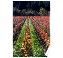 Russian River Autumn Poster