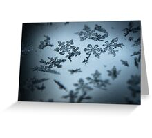Ice crystals in detail Greeting Card