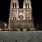 Notre Dame Cathedral by Ward McNeill