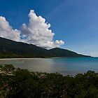 Cape Tribulation Beach by Ryan Pedlow