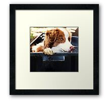Who turned up the Heat??? Framed Print