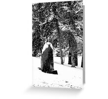 Silence  - Winter Landscape Collection 2009 - Montana Greeting Card