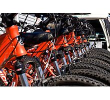 Mountain bikes in row Photographic Print