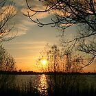 Sunset in Elbe River by Nugrahini Tj.