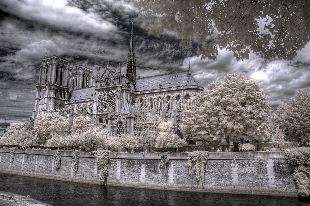 Norte Dame Cathedral Infrared by Ward McNeill