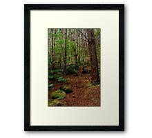 Mt Franklin,Daylesford District Framed Print