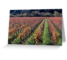 Russian River Autumn  Greeting Card
