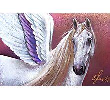 Sunset Pegasus Photographic Print