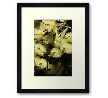 Bottle Brush Fantasy Framed Print