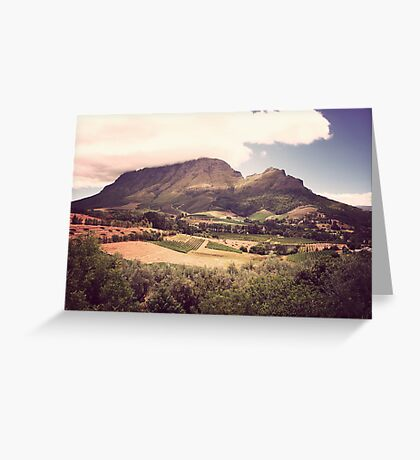 Stellenbosch Wine Country - South Africa Greeting Card