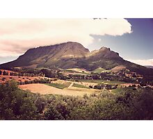 Stellenbosch Wine Country - South Africa Photographic Print