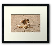 who farted!!! Framed Print