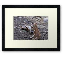 Well at least I'm still intact! Framed Print