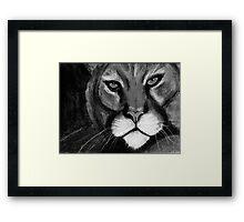 Night Cat Framed Print