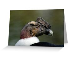 Vulture1 Greeting Card
