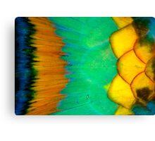 Parrotfish scales Canvas Print