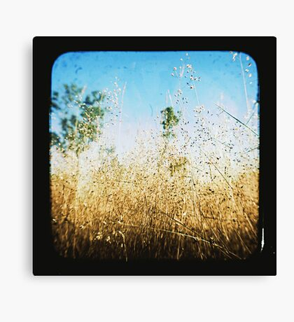 The Land that Was Canvas Print