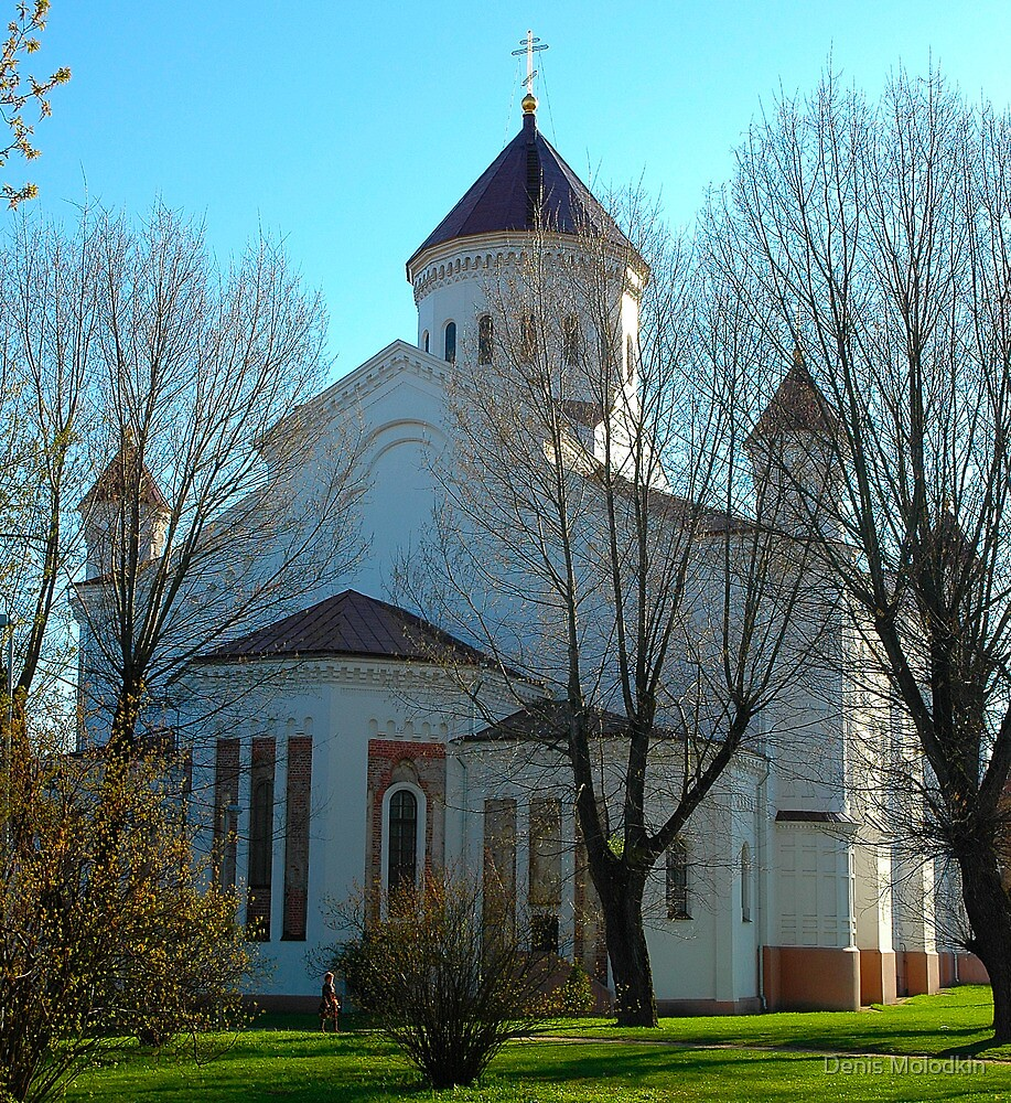 "Temples - ""The Cathedral of the Theotokos in Vilnius (LT)"" p.2 by Denis Molodkin"