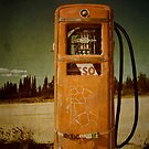 Gas Station by Priska Wettstein